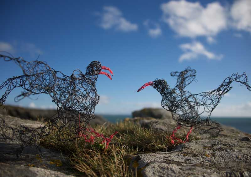 Wire birds on the beach